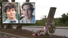 Devastation after council chops down tree memorial for two teens killed in crash