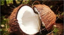 Here are Top Health and Nutritional Benefits of Coconut Oil