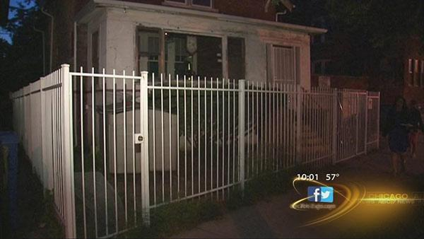 Child mauled by 2 pit bulls in South Shore