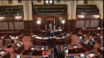 Concealed-carry bill heads IL Senate