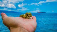 420 Million Reasons Marijuana Stocks Could Move Higher