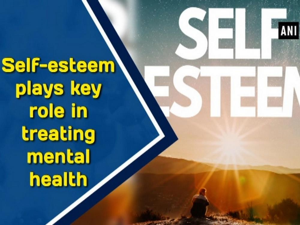 The adolescents search for self esteem and the role of professors in the search