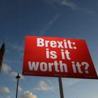 Lawmaker on EU parliament Brexit committee urges second UK referendum