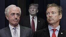2 opposing views of Syria and Mattis, from Bob Corker and Rand Paul