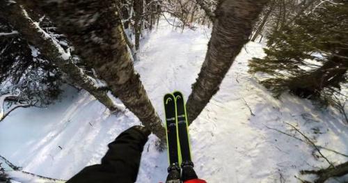 Ski - Une ligne à travers la forêt pour Jesper Tjäder
