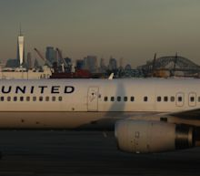 United suspends pet cargo flights