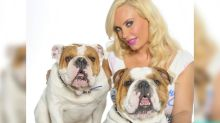 Coco Austin Mourns the Death of Adorable Bulldog Spartacus: 'My First Baby'