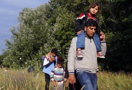 Migrants from Afghanistan walk just after they crossed the border from Serbia to Hungary, near the village of Asotthalom