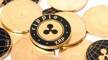 Ripple Investment: Mitgründer verschickt 500.000.000 XRP an Fonds