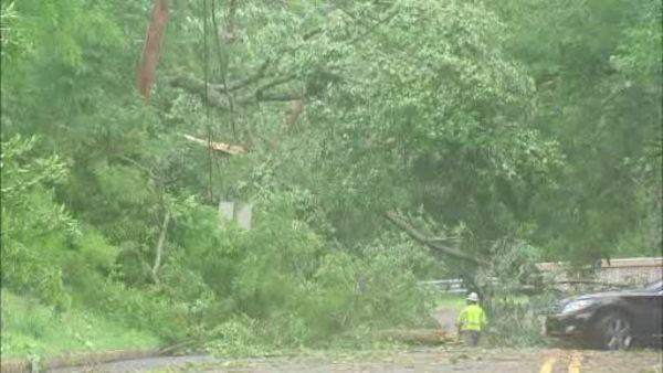 Trees down and homes damaged in New Jersey after tornado