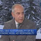 Solar cell tariff will 'jack up' prices for a while: Enel CEO