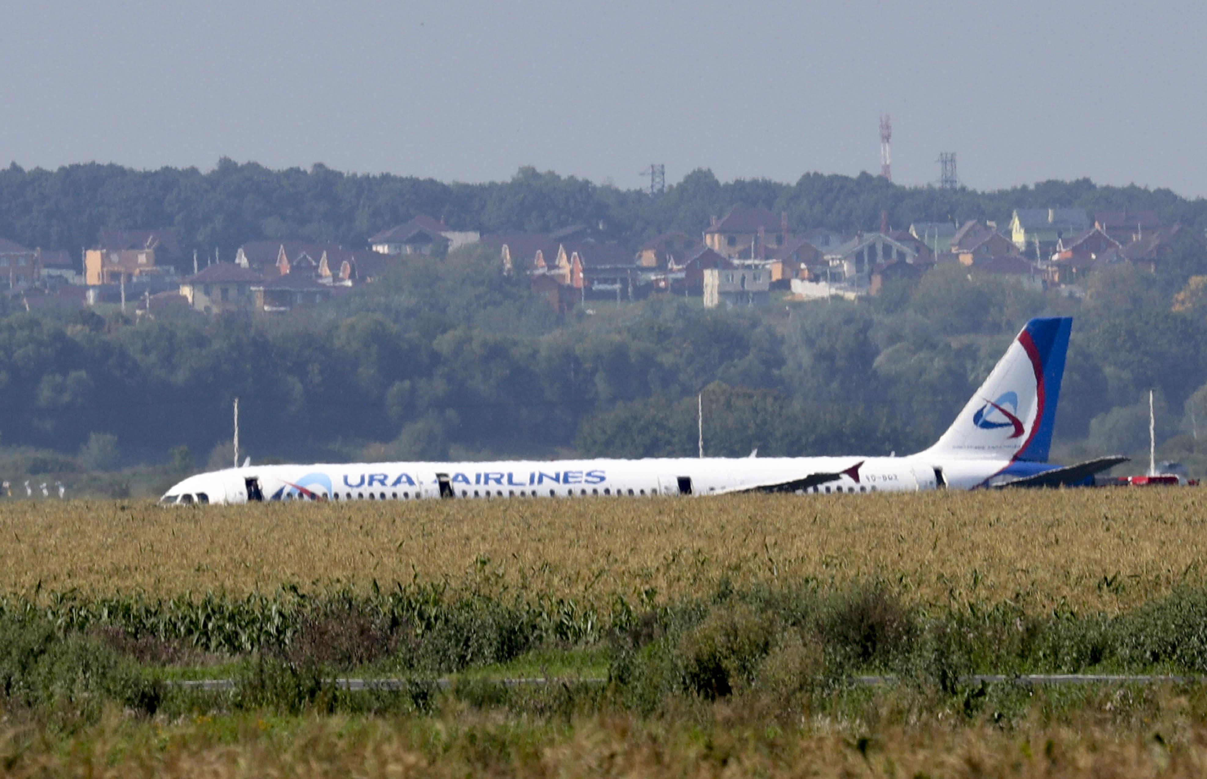 Un avión A321 de Russian Ural Airlines se ve después de un aterrizaje de emergencia en un campo de maíz cerca de Ramenskoye, en las afueras de Moscú, Rusia, el jueves 15 de agosto de 2019. El A321 de Russian Ural Airlines, con 226 pasajeros y una tripulación de siete, chocó con un bandada de pájaros mientras despegaba el jueves desde el aeropuerto Zhukovsky de Moscú. Las autoridades sanitarias rusas dijeron que 23 personas, incluidos cinco niños, han sido hospitalizadas con heridas. (Andrei Nikerichev, foto de la Agencia de Noticias de Moscú vía AP)