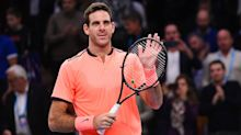 Tennis: Del Potro cruises past Karlovic in Stockholm