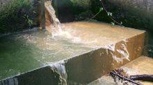 """Los ríos se han vuelto amarillos en la """"capital del curry"""" del Reino Unido debido a los desperdicios de alimentos"""