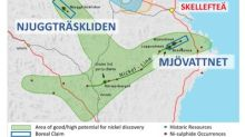 Boreal Signs Definitive Agreement to Acquire Further Cobalt and Nickel Projects in Sweden