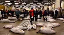 Japan Set to Reach Its Pacific Bluefin Tuna Fishing Quota Two Months Early