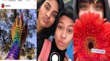 Instagram Lite users in India can now view Reels, but they still can't create them