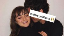 Maisie Williams just gave us the Stark reunion we didn't know we needed
