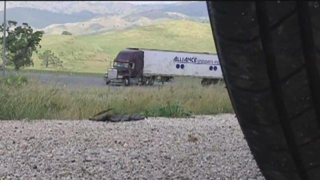 CHP cracks down on semis in the Grapevine