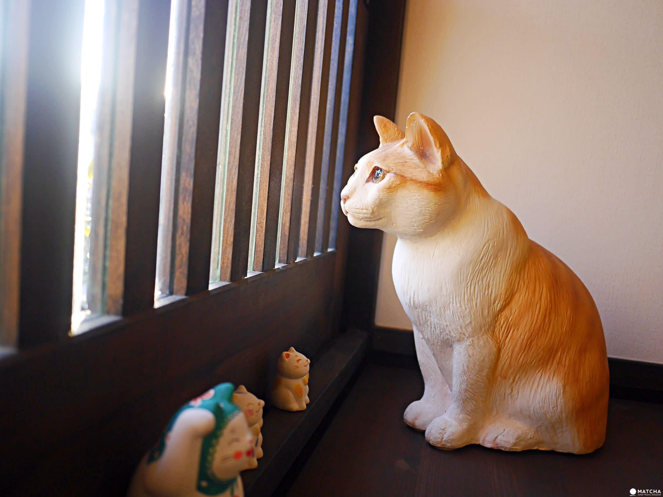 咖啡貓衛門貓咪