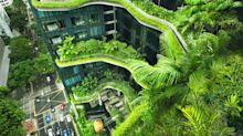 Planted buildings: is this the future of our cities or just an eco-fantasy?