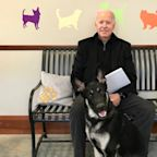 Bidens may add cat to White House pet family