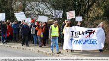 Des écologistes manifestent contre le projet d'Elon Musk de défricher 300 hectares de forêt pour son usine Tesla en Allemagne