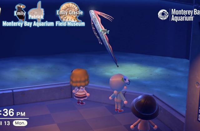 Monterey Bay Aquarium is doing virtual tours in 'Animal Crossing'