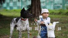 【習慣寵愛:唐狗哥哥與小B妹妹】