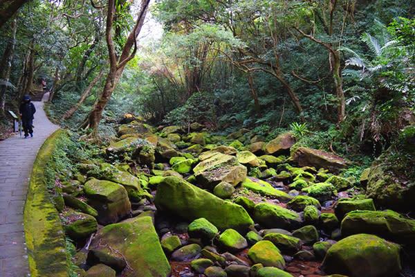 內溝溪景觀生態步道 (圖/台北市政府、攝影/高讚賢)