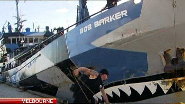 Sea Shepherd ships in dock