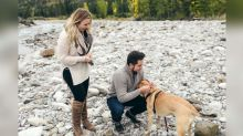 Man proposes to girlfriend then their dog with pink rhinestone collar