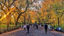 Central Park Has Always Been Beloved by New Yorkers. Now, It's a Sanctuary.