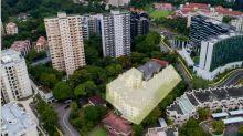 Pine Tree condominium goes en bloc with $148mil tag