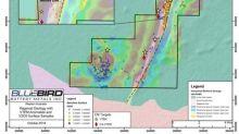 BlueBird Intersects 8.0 Metres of 1.03% Vanadium Mineralization at Canegrass Project, Western Australia
