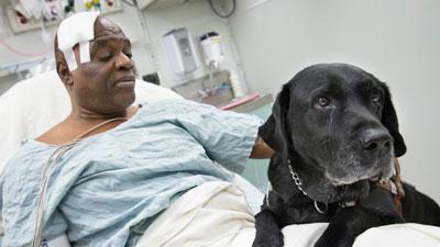 Blind Man, Dog Rescued on NYC Subway Tracks