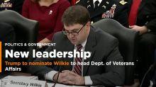 Trump nominates acting VA secretary Wilkie for permanent job