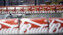 AB InBev Plans Additional Breweries in Mozambique, Nigeria