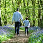 Father's Day 2019: Paganism, roses and how the campaign to celebrate dads was won