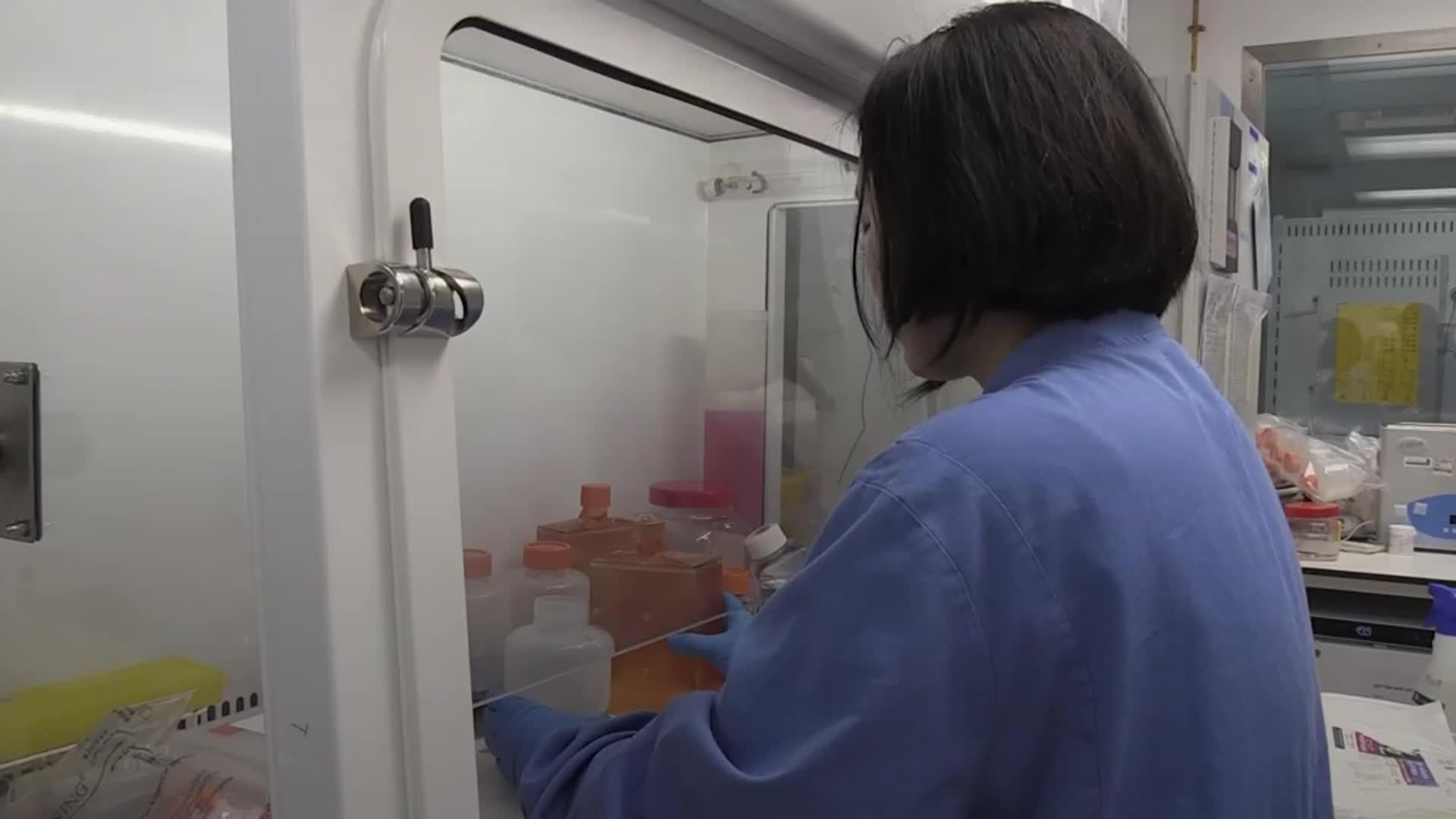 New 90-minute tests for Covid-19 to be rolled out [Video]