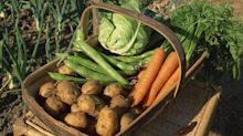 Studie: Esst wie die Bauern im 19. Jahrhundert!