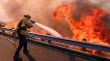 Waldbrände in Kalifornien treffen europäische Rückversicherer wahrscheinlich kaum