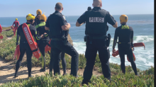 A 100-mph car chase in California ended in the Pacific Ocean, police say. The driver survived and was arrested.