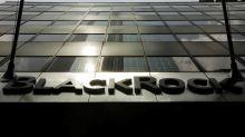 BlackRock profit misses as investors opt out of expensive funds