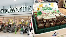 Collectables confusion as shopper finds Woolworths Discovery Garden in store 'early'