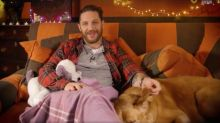 One last CBeebies Bedtime Story for Tom Hardy and his late dog Woody