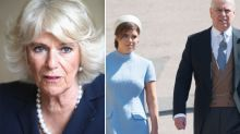 Is Camilla's wedding snub down to 'past tensions' with Prince Andrew?