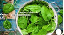 補鈣唔一定要飲牛奶!營養師教你食高鈣綠葉