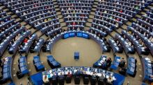 European Parliament urges France, EU to impose sanctions against terrorist activities in Pakistan