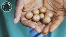 How Macadamia Nuts Became the Secret Ingredient in Your Sustainable Skincare Products